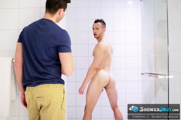 novato gayroom